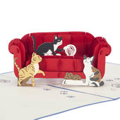 Cats & Sofa Pop-Up Any Occasion Greeting Card Blank Inside