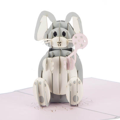 Baby Girl Bunny Pop-Up New Baby Greeting Card Blank Inside