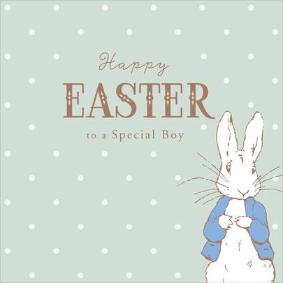 Peter Rabbit Special Boy Happy Easter Greeting Card