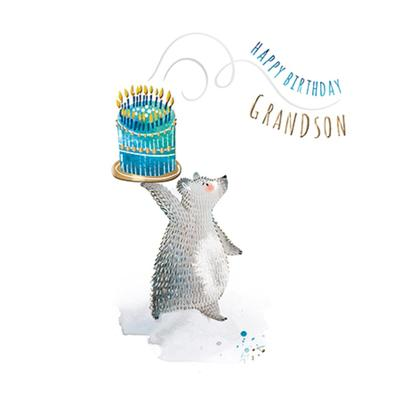 Grandson Birthday Greeting Card By The Curious Inksmith