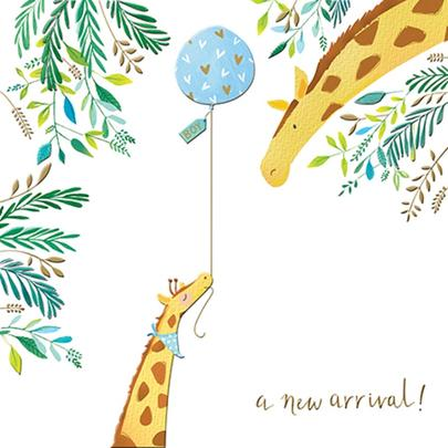 New Arrival Boy New Baby Greeting Card By The Curious Inksmith