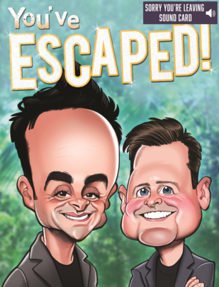 Ant & Dec Sorry You're Leaving Large Greeting Sound Card Blank Inside