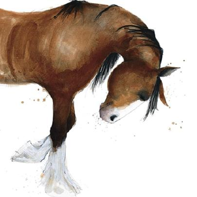 Shire Horse Animal Magic Square Art Greeting Card Blank Inside