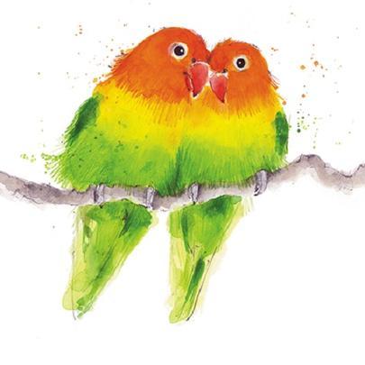 Love Birds Animal Magic Square Art Greeting Card Blank Inside