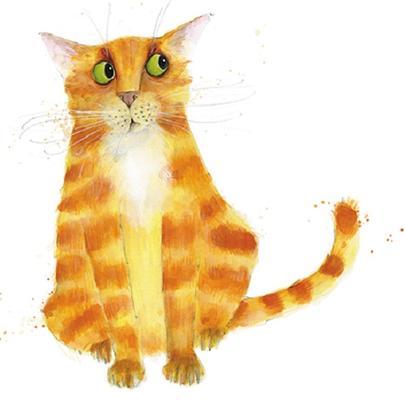 Ginger Cat Animal Magic Square Art Greeting Card Blank Inside