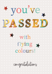 You Passed With Flying Colours!  Greeting Card