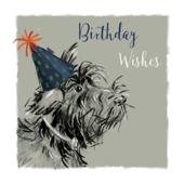 Birthday Wishes Scruffy Dog Birthday Greeting Card