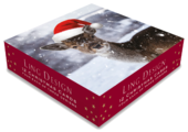 Box of 12 Assorted Winter Wildlife Square Christmas Cards
