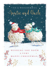 Wonderful Auntie & Uncle Christmas Greeting Card