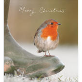 Pack of 5 Winter Morning Charity Christmas Cards