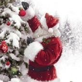 Santa & His Tree Musical Christmas Greeting Card