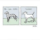 Ah....AAh....TCHOO Dalmatian World Of Moose Greeting Card