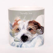 Snoozing Jack Russell Scruffy Love Little Dog Laughed China Mug In Gift Box