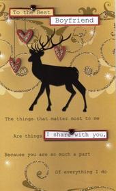 Special Best Boyfriend Christmas Card