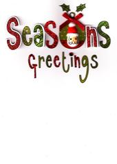 Seasons Greetings Lovely Embellished Christmas Greeting Card