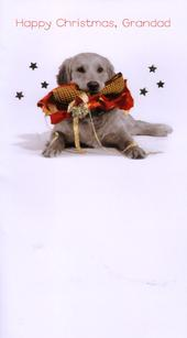 Grandad Luxury 3D Glitter Xmas Happy Christmas Cards Puppy Photo Finished Card