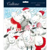 Xmas Sheep Santa Hats Traditional Caltime Christmas Advent Calendar