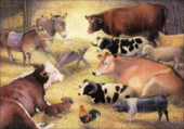 Animals In The Manger Traditional Caltime Christmas Advent Calendar