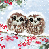 Pack of 5 Baby Owls Charity Christmas Cards