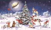 Magical Night The Wildlife Christmas Advent Calendar
