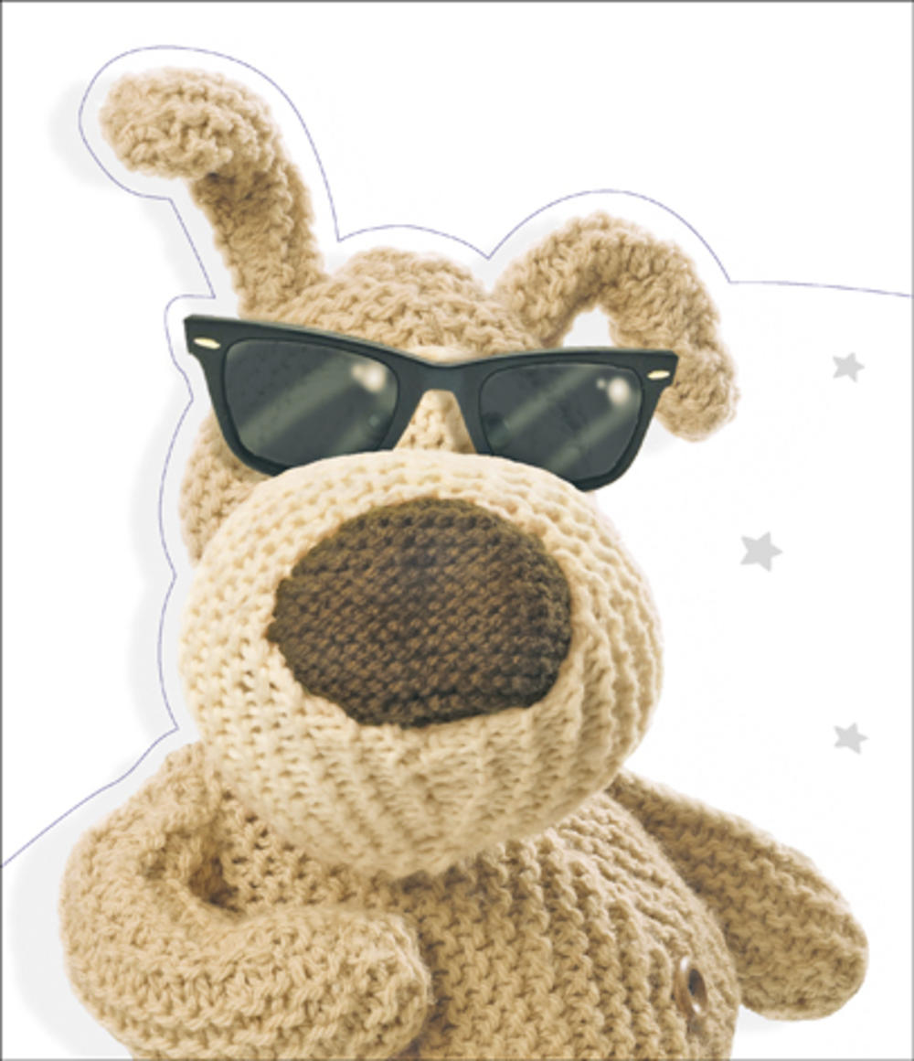Boofle Cool Birthday Fold Out Card