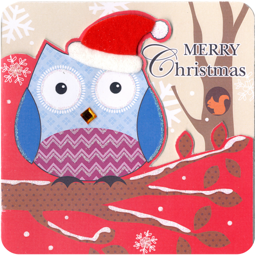 Box of 5 Owl Christmas Cards Hand Finished