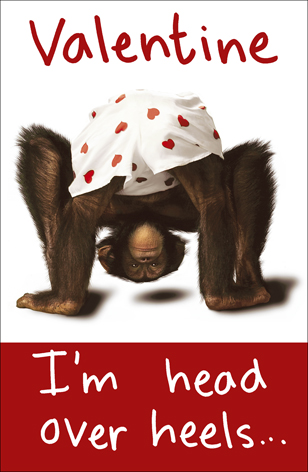 Chimp I M Head Over Heels In Love With You Valentines Day