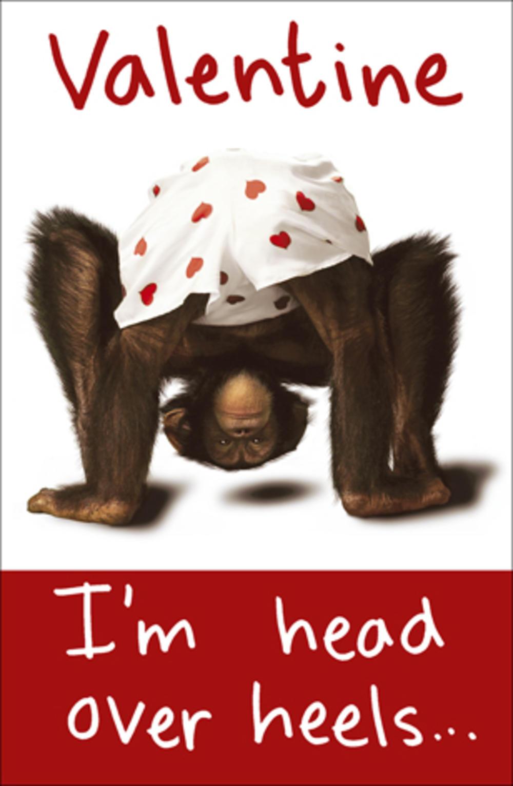 Chimp I'm Head Over Heels In Love With You Valentines Day Card Valentine Cards