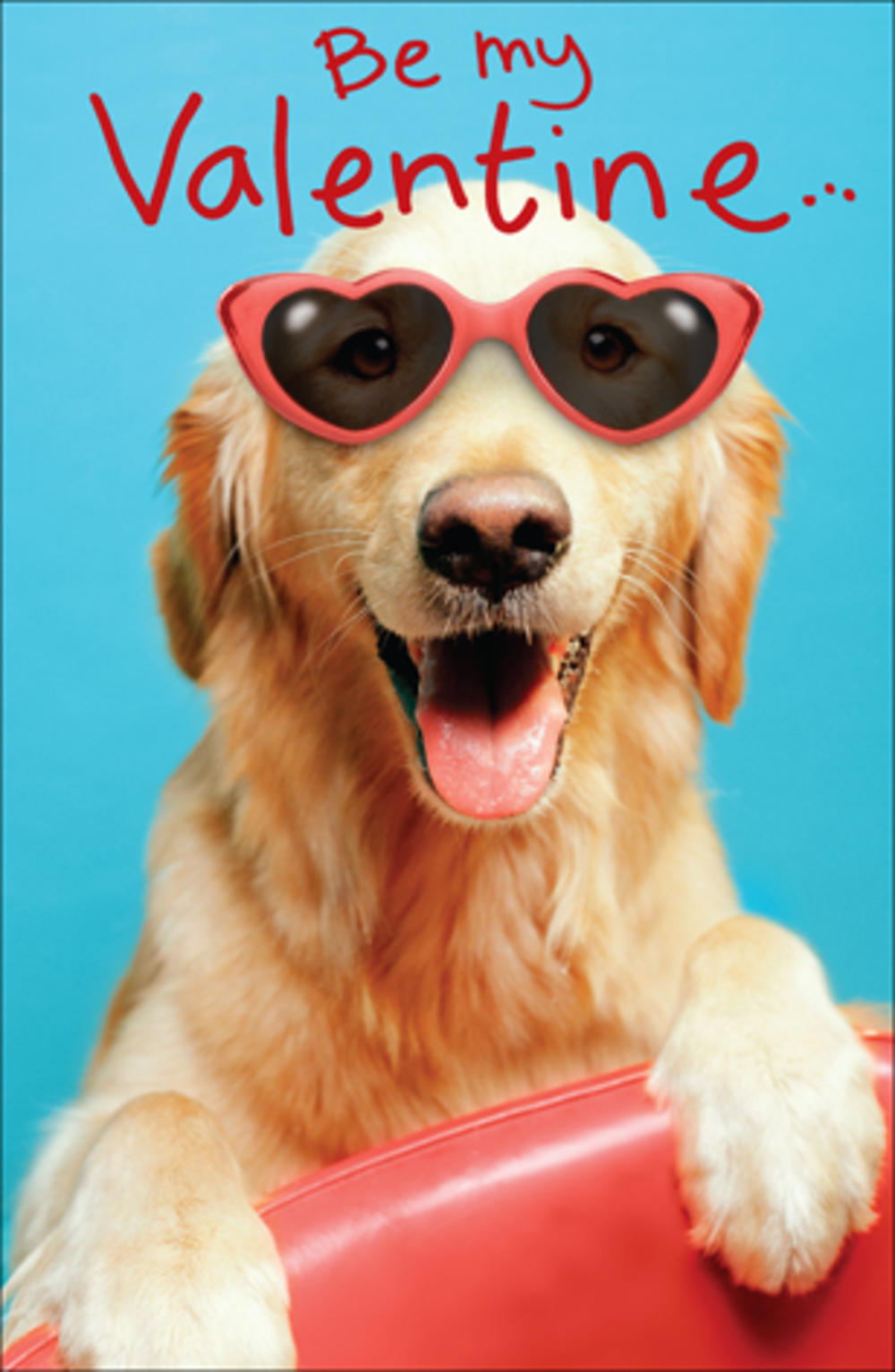 Dog Wearing Sunglasses Valentine's Day Card