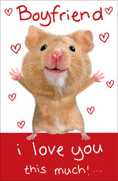 Boyfriend Hamster Wobbly Eyes Valentine's Day Card