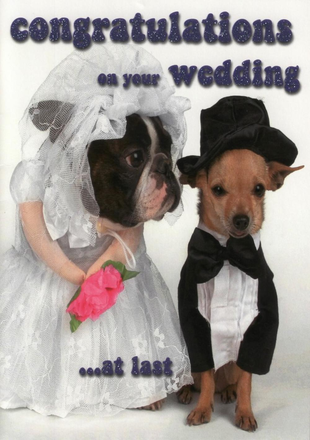 Congratulatons On Your Wedding...At Last Funny Greeting Card
