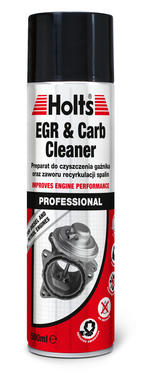 Holts HMTN0201A Egr Carb Cleaner Thumbnail 1