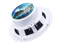 "DS18 WAVES852 380 Watt 8"" Marine Speakers"