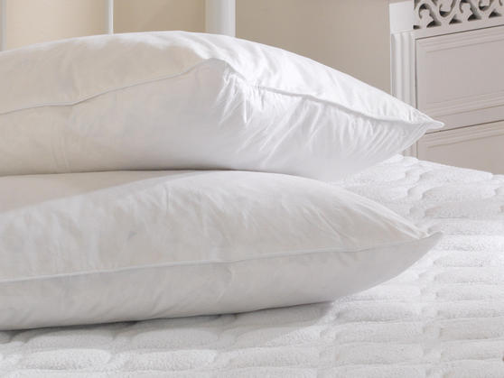 White Goose Feather and Down Cotton Cover Pillow Pair Thumbnail 3