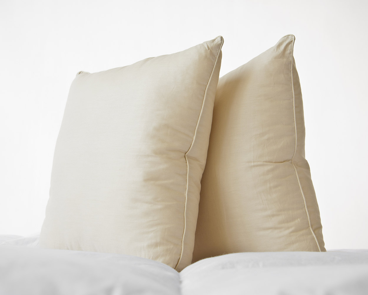 100% Cotton Yellow Percale Piped Edge Cushion Pad