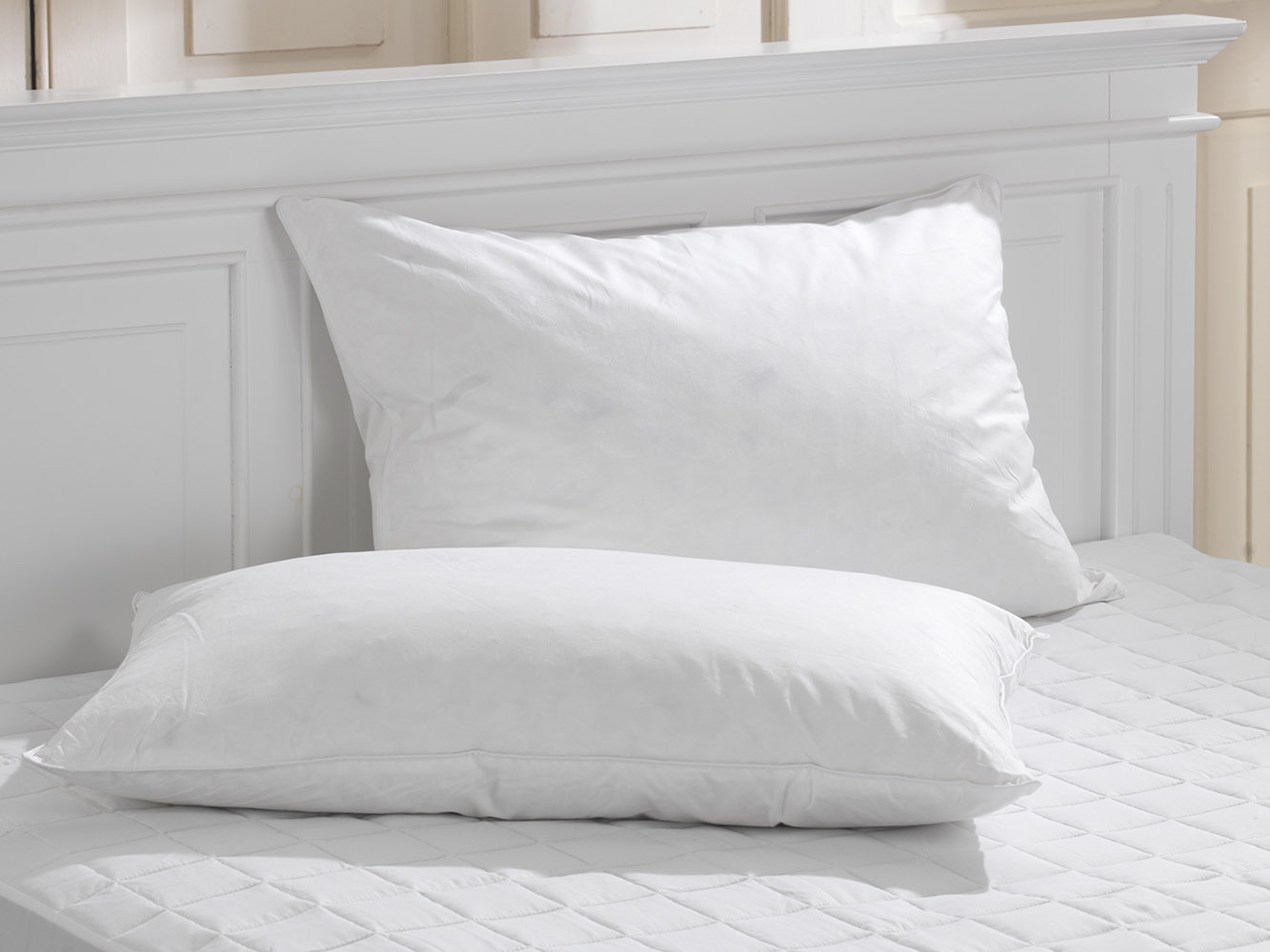 Duck Feather Piped Pillow Pair