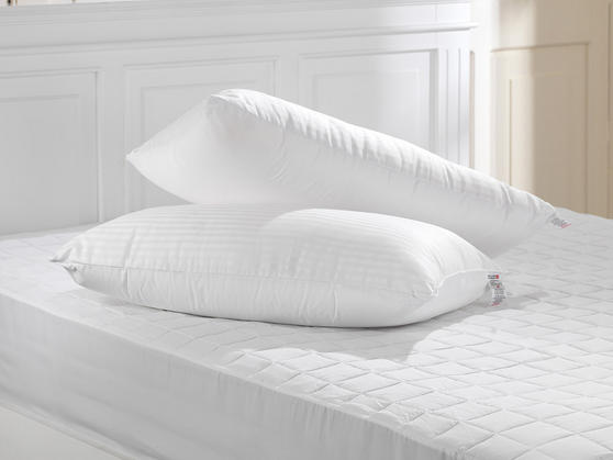 Unique 5 Star 300TC Percale Cotton Duo Half Memory Half Hollowfibre Tri- Pillow Thumbnail 1