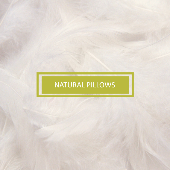 Natural Pillows
