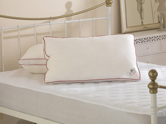 Breathable Health Down Pillows with Pillowcases Thumbnail 1
