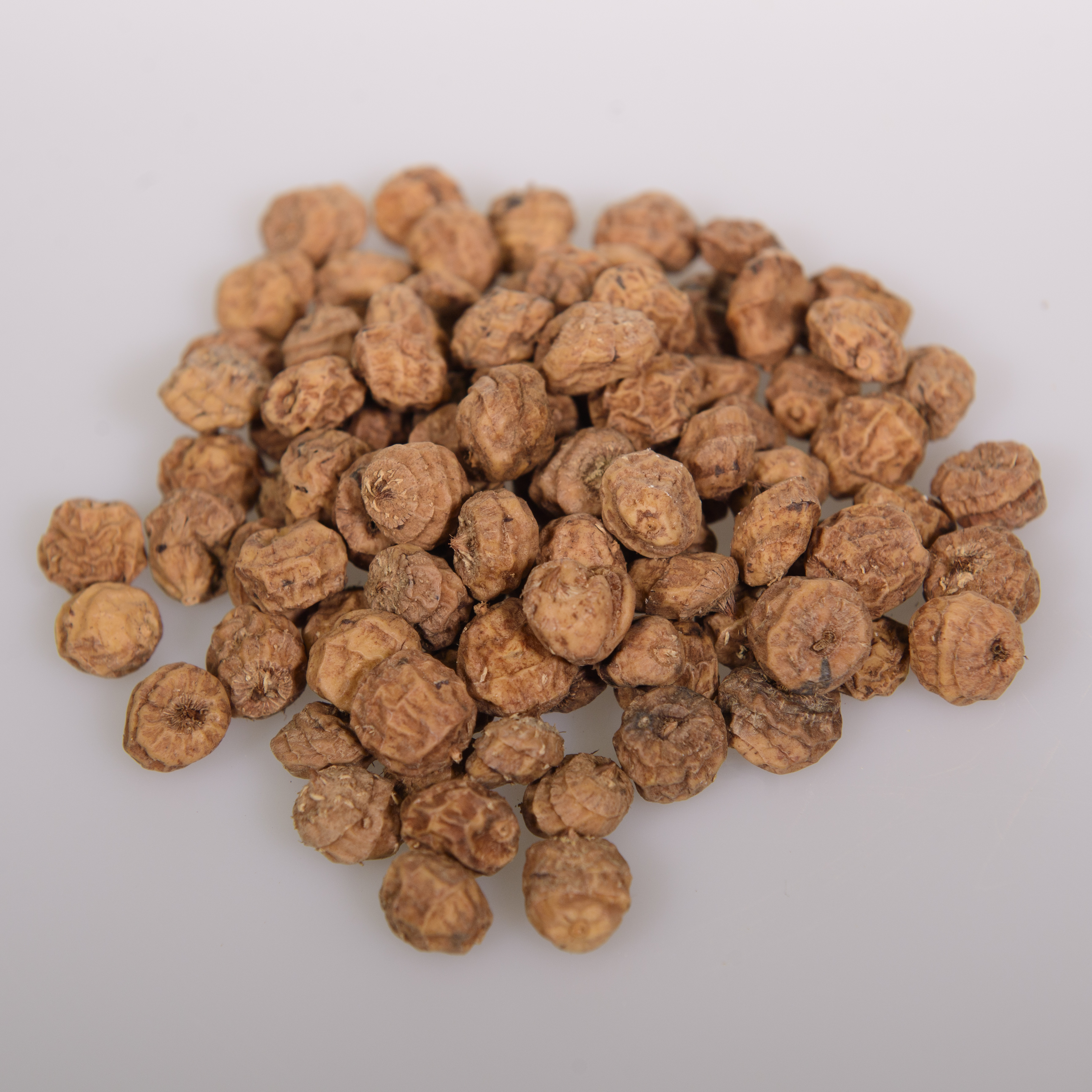 Evolved Small Tiger Nuts Coconut Carp Fishing Bait 900g 25kg