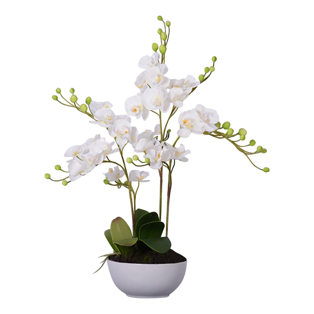 White Orchid Plant White Ceramic Pot Fiori Artificial Flower Home
