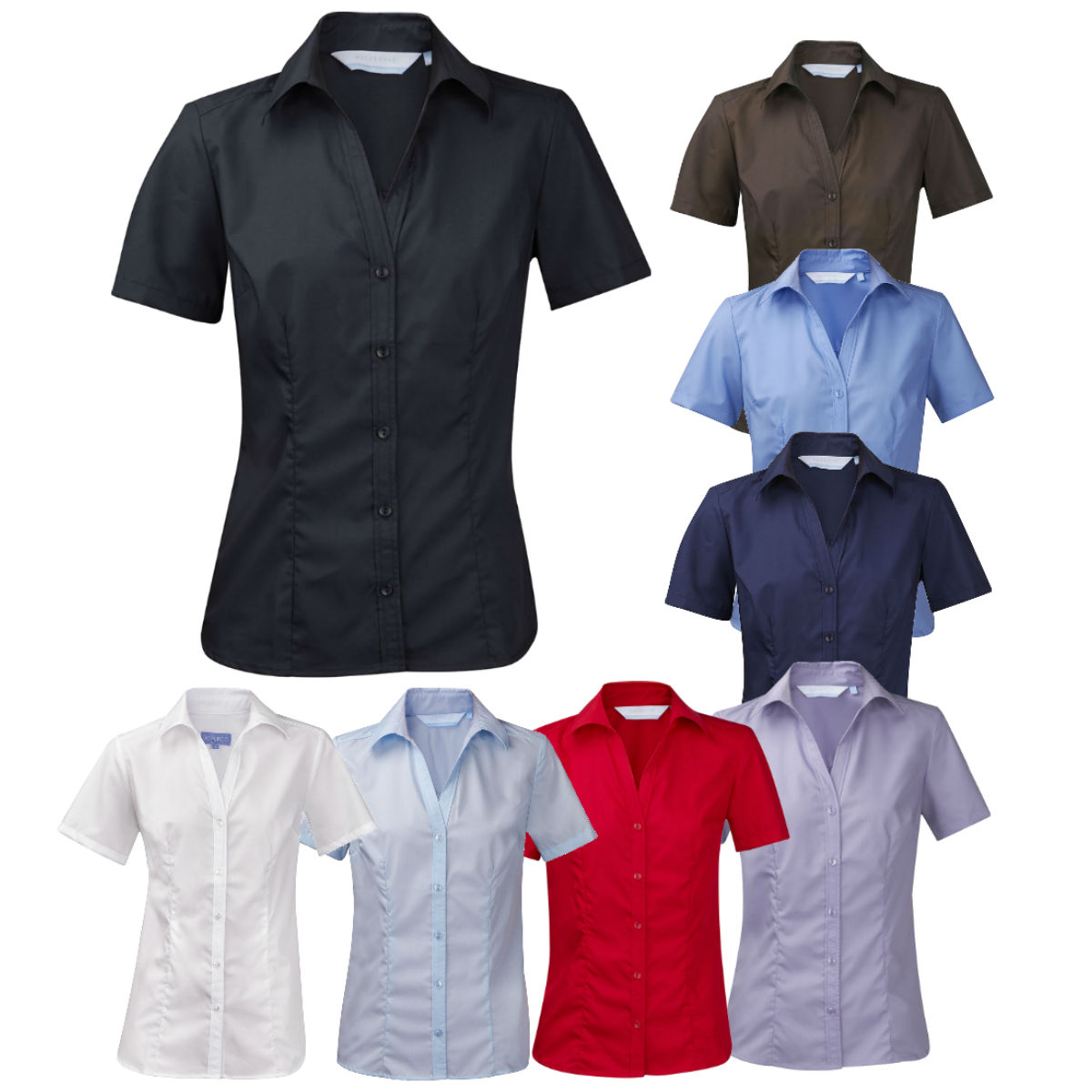 482161a5d Ladies Womens Plus Size New Casual Work Blouse Shirt Short Sleeve Open Neck