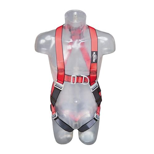 Capital Safety AB11313NG Protecta® Pro? Full Body Harness 2 Points Anchorage