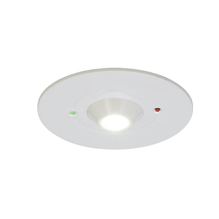 Ansell Raven 3W LED Emergency Downlights Self Test