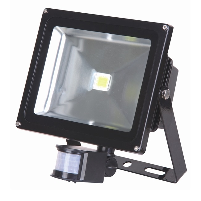 Lumineux 30w LED PIR Black Floodlight