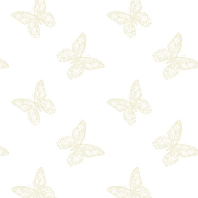 Oasis-Fleuriste-Cellophane-Film-Rouleau-80cm-X-100m-Transparent-Nombreux-Styles miniature 18