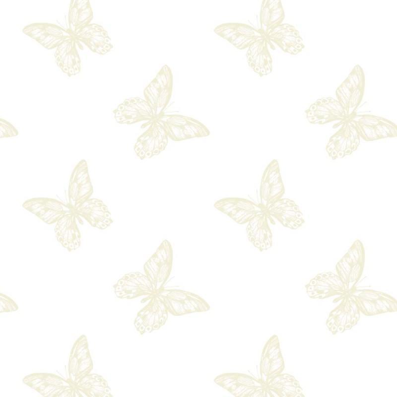 Oasis-Fleuriste-Cellophane-Film-Rouleau-80cm-X-100m-Transparent-Nombreux-Styles miniature 19