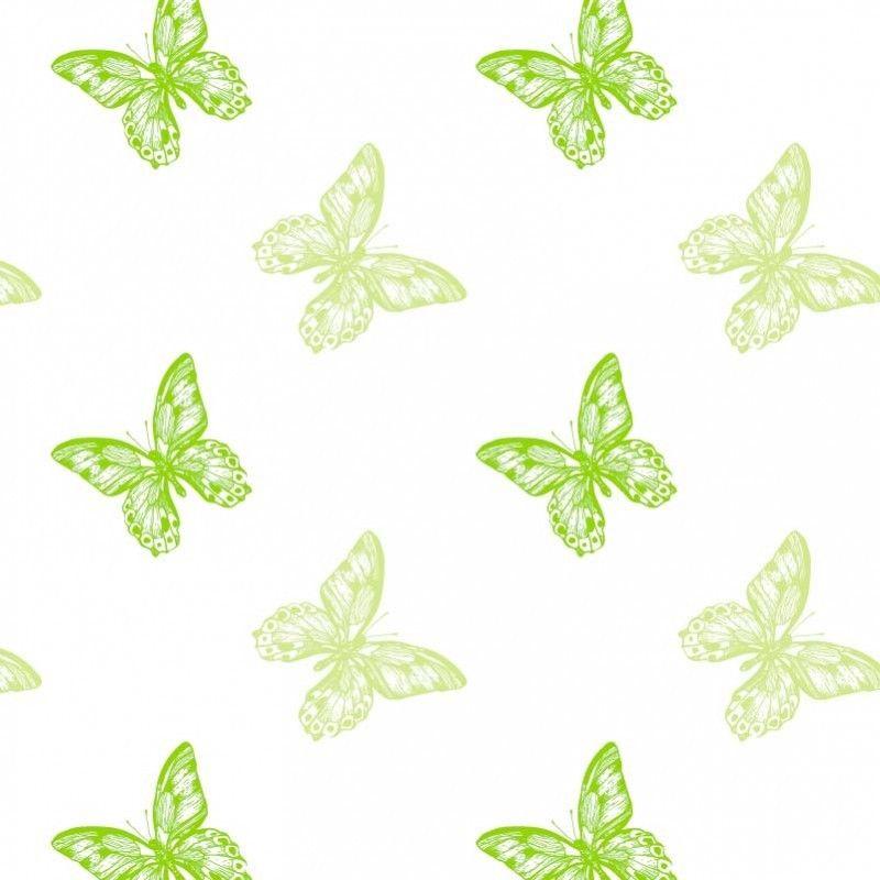 Oasis-Fleuriste-Cellophane-Film-Rouleau-80cm-X-100m-Transparent-Nombreux-Styles miniature 21