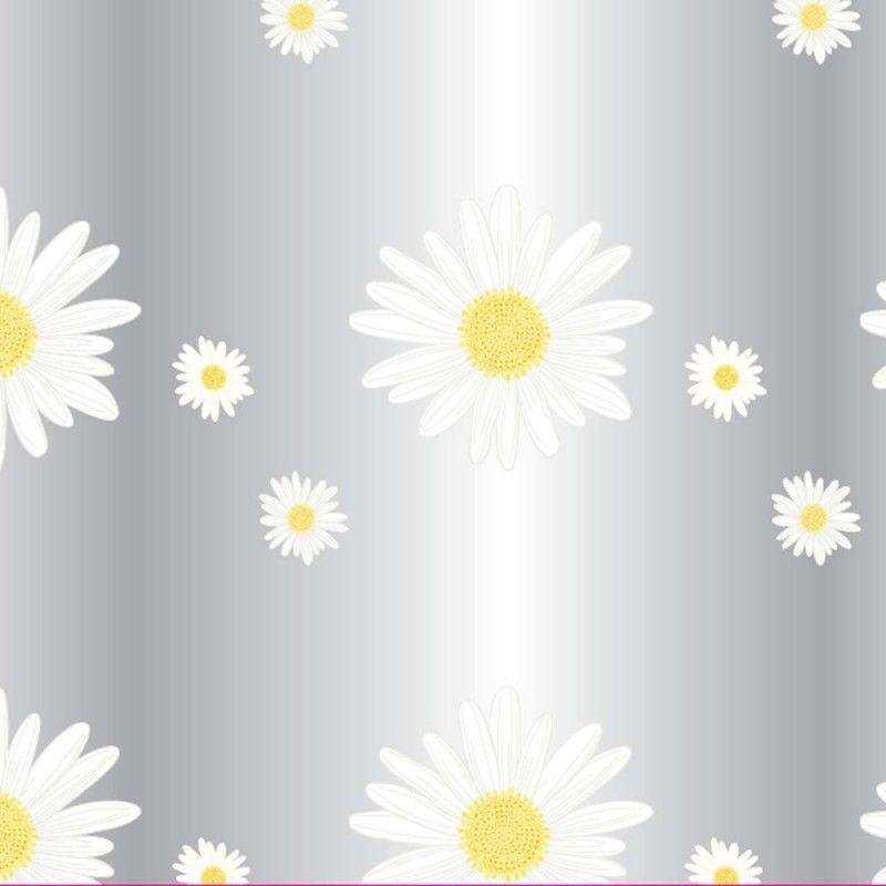Oasis-Fleuriste-Cellophane-Film-Rouleau-80cm-X-100m-Transparent-Nombreux-Styles miniature 9
