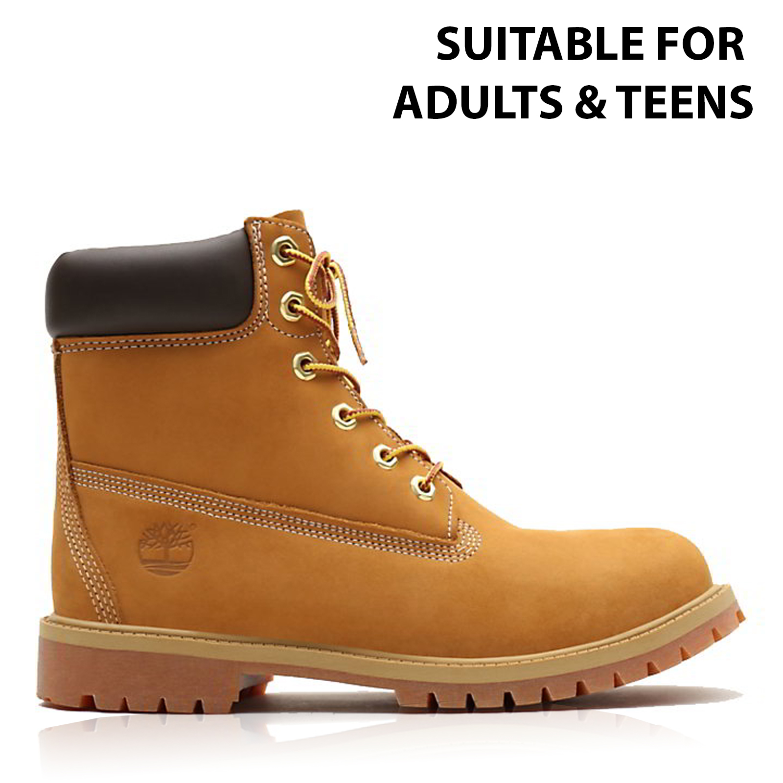 difference between timberland junior and femmes